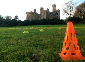 Agility course castle